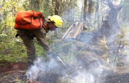 Внимание! В лесах Югры - пожароопасно! Будьте бдительны!