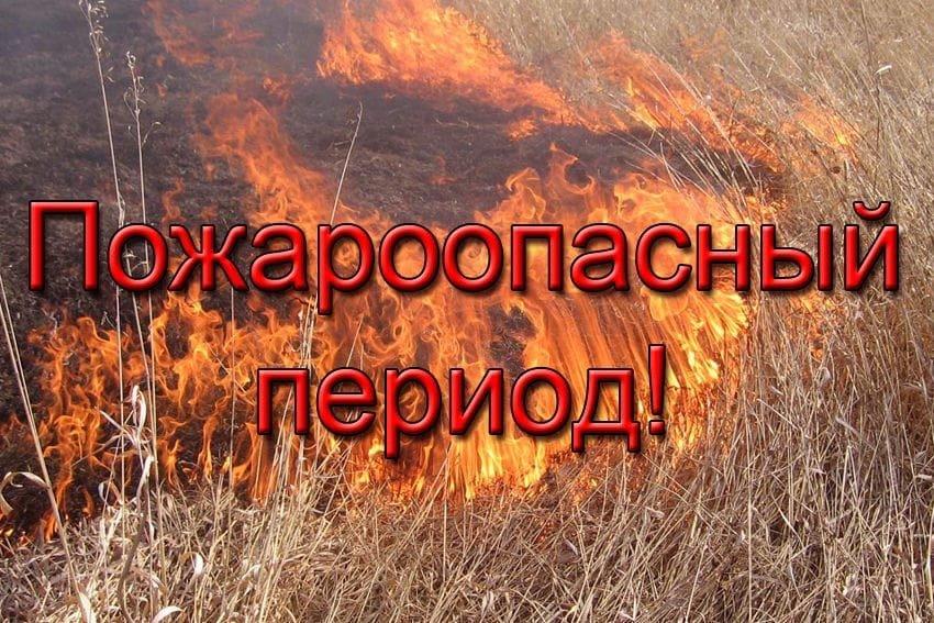 В лесах Югры объявлен пожароопасный период