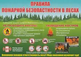 Какие пожары и загорания характерны для весенне-летнего периода